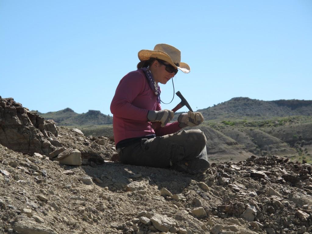 Field paleontologist